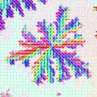 DSPC-POPC  bilayer: <br>2 photon polarization imaging